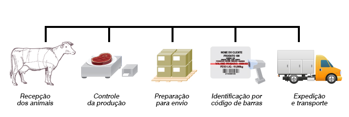 Cadeia de produção